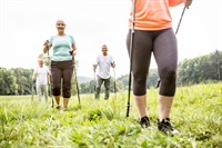 Image of How to Use a Nordic Pole Walking Program So That You Increase Patient