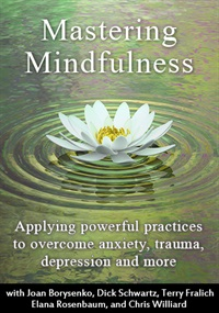 Image of Mastering Mindfulness: Applying powerful practices to help with anxiet