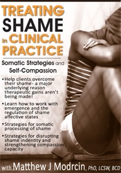 Image of Treating Shame in Clinical Practice: Somatic Strategies and Self-Compa
