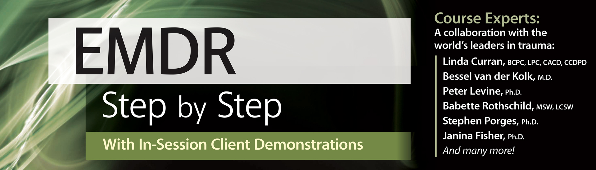 EMDR: Step by Step With In-Session Client Demonstrations