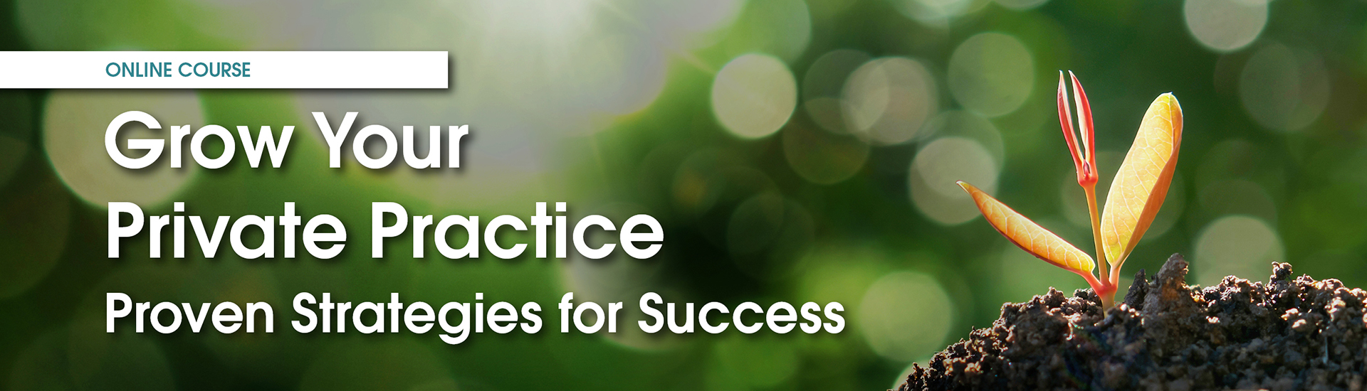 Grow Your Private Practice Online Course