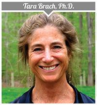 Tara Brach, PhD